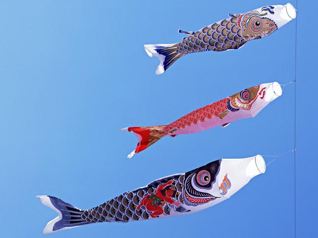 E japan journal may 2015 for Japanese fish flag